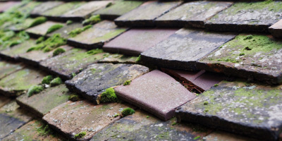 Stafford roof repair costs